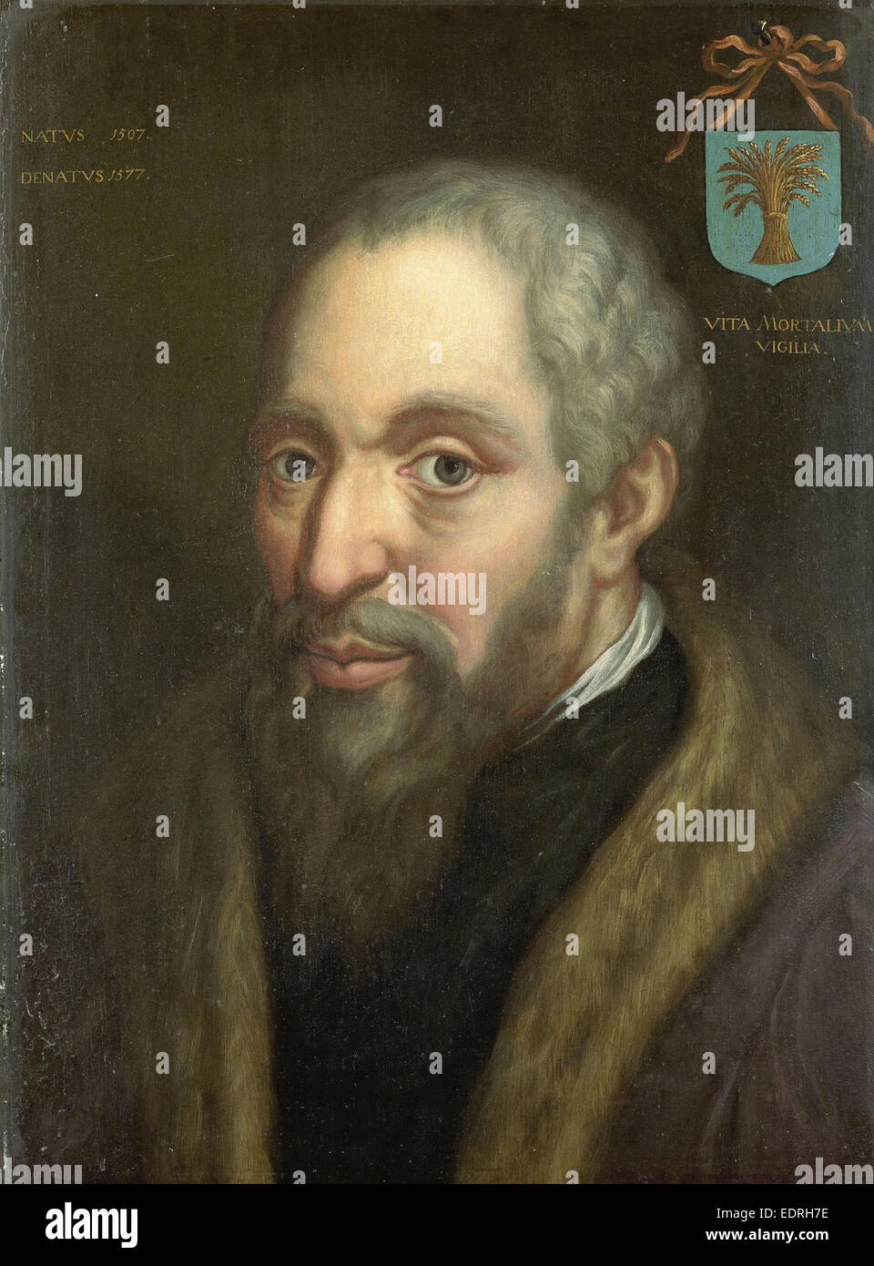 Portrait of Viglius ab Zuichemus, Frisian Jurist, President of the Privy Council and Member of the Council of State, - Stock Image