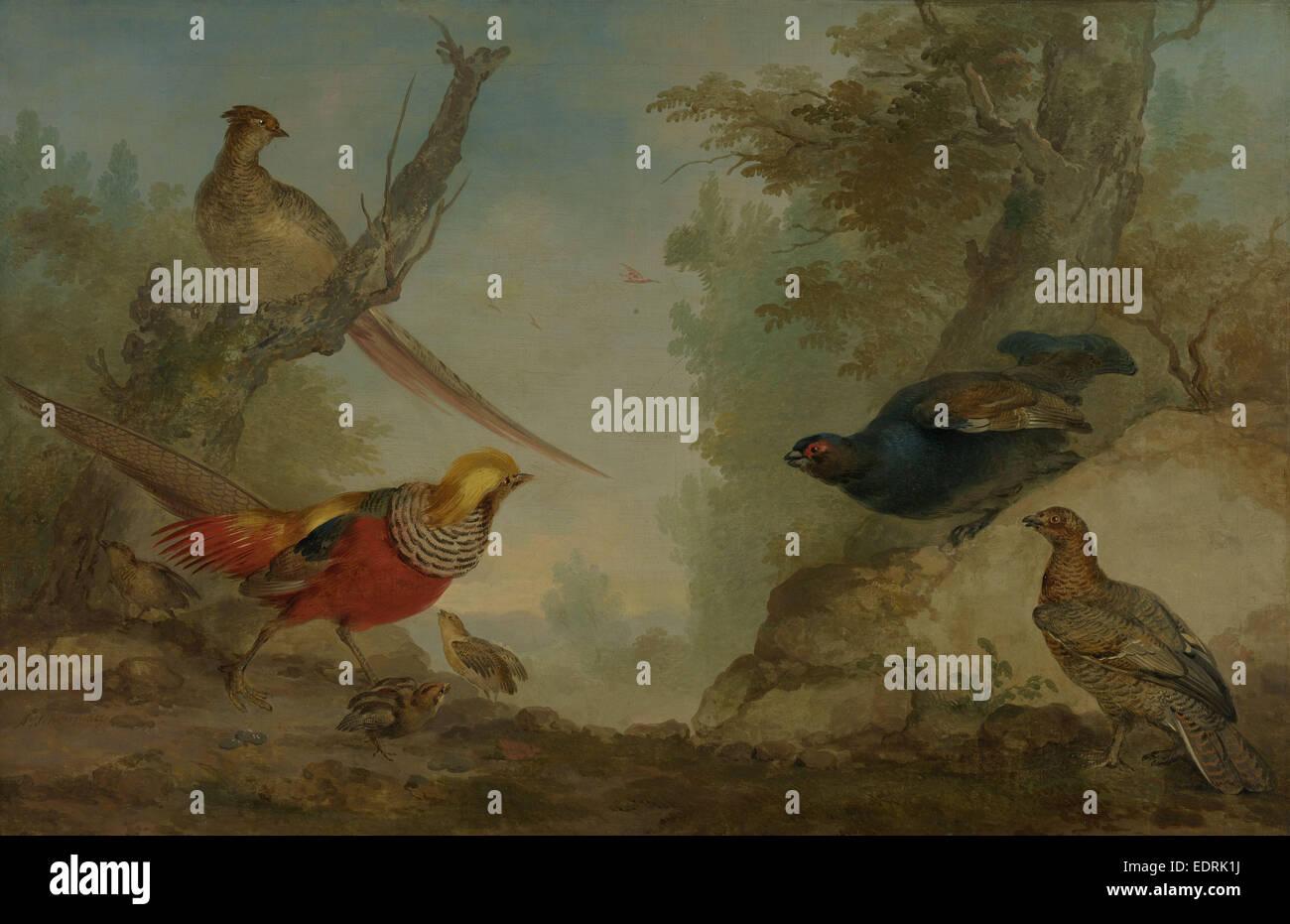 Pheasants, Aert Schouman, 1730 - 1760 - Stock Image