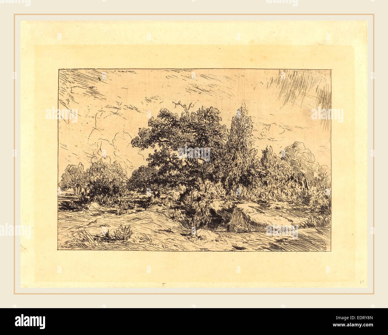Théodore Rousseau (French, 1812-1867), Vue du Plateau de Bellecroix, 1848-1849, etching - Stock Image