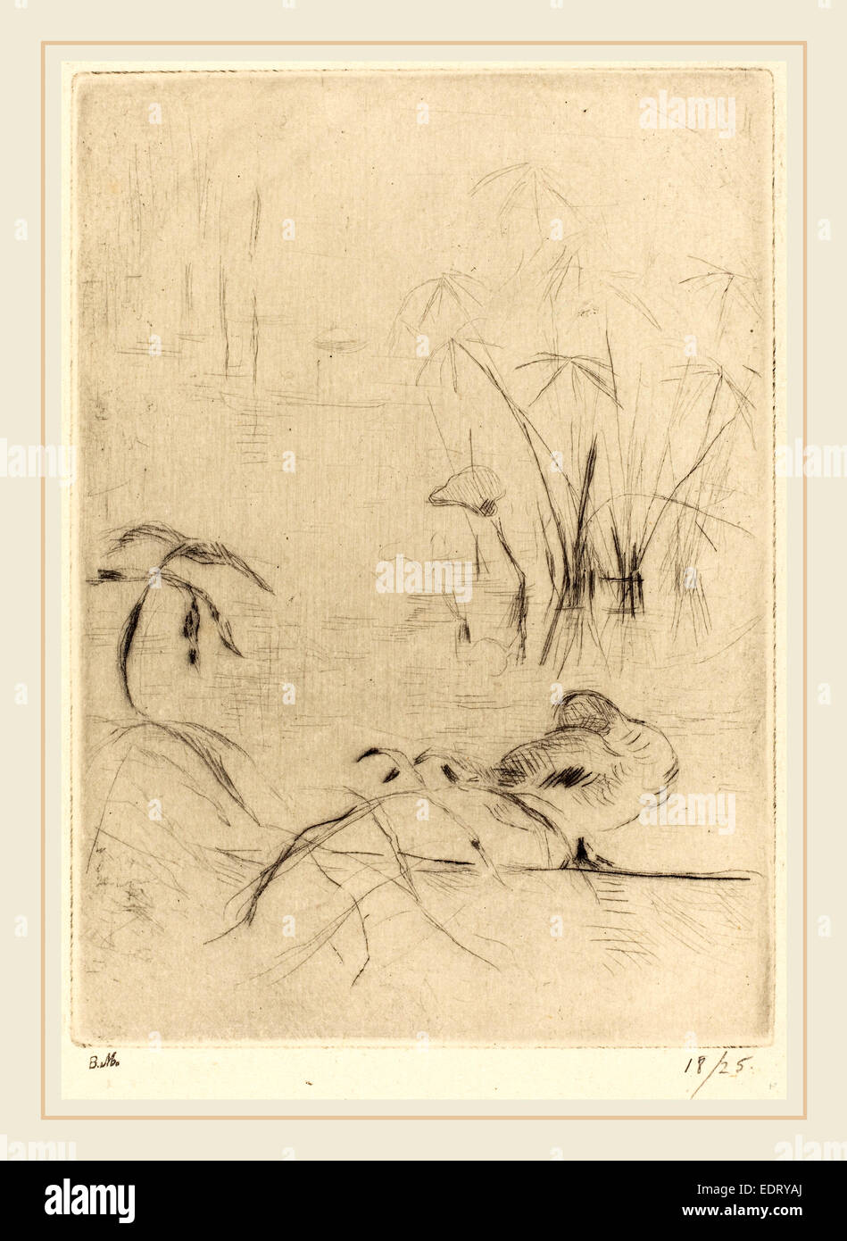Berthe Morisot (French, 1841-1895), Ducks at Rest on the Bank, 1888-1890, drypoint [reprinted by Ambroise Vollard] - Stock Image