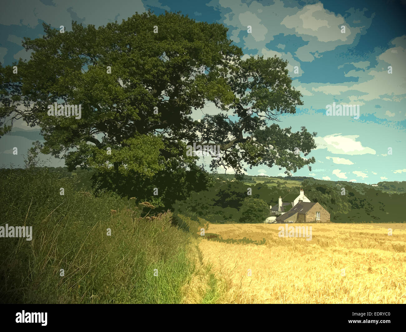 Rural Boozer in Windley, Nestled in the fold below is the Puss in Boots Public House, enveloped by crop fields and - Stock Image