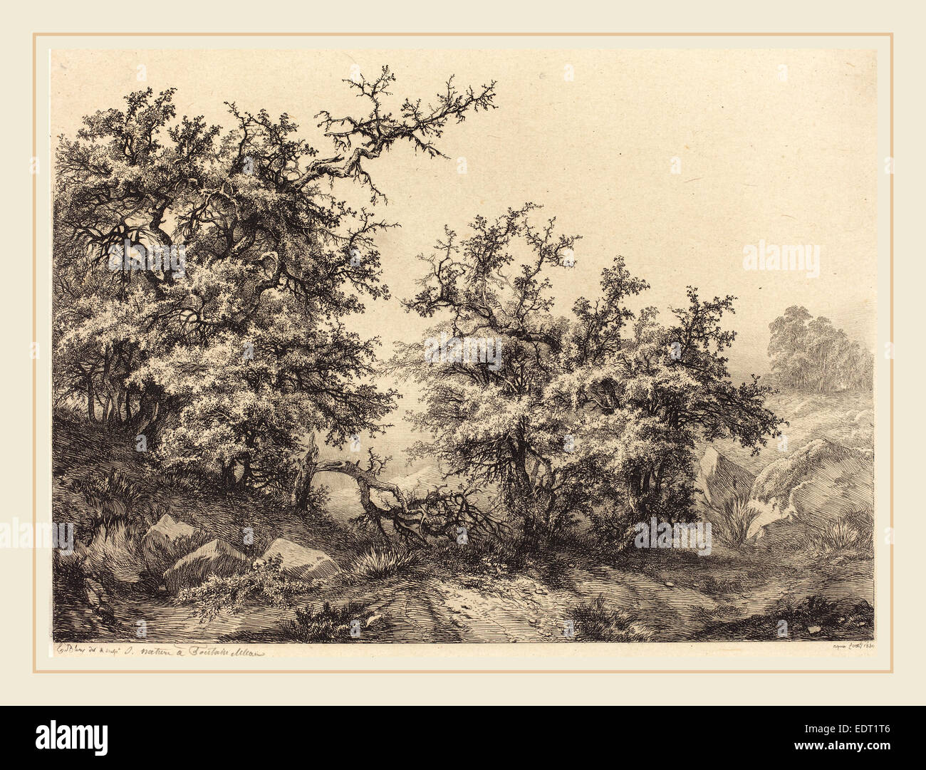 Eugène Bléry (French, 1805-1887), Thornbushes, 1840, etching with drypoint and roulette on chine collé - Stock Image