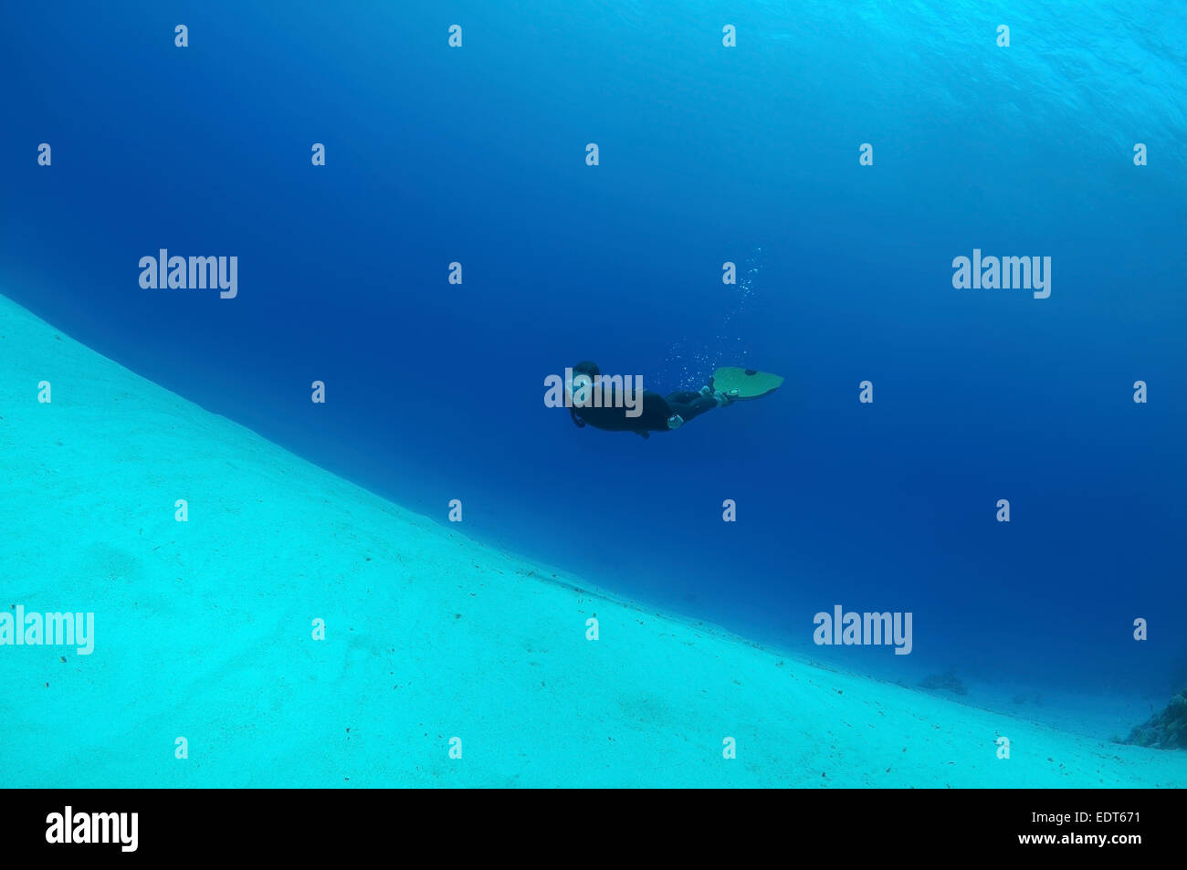 Freediver swims over a sandy bottom, Red Sea, Egypt - Stock Image