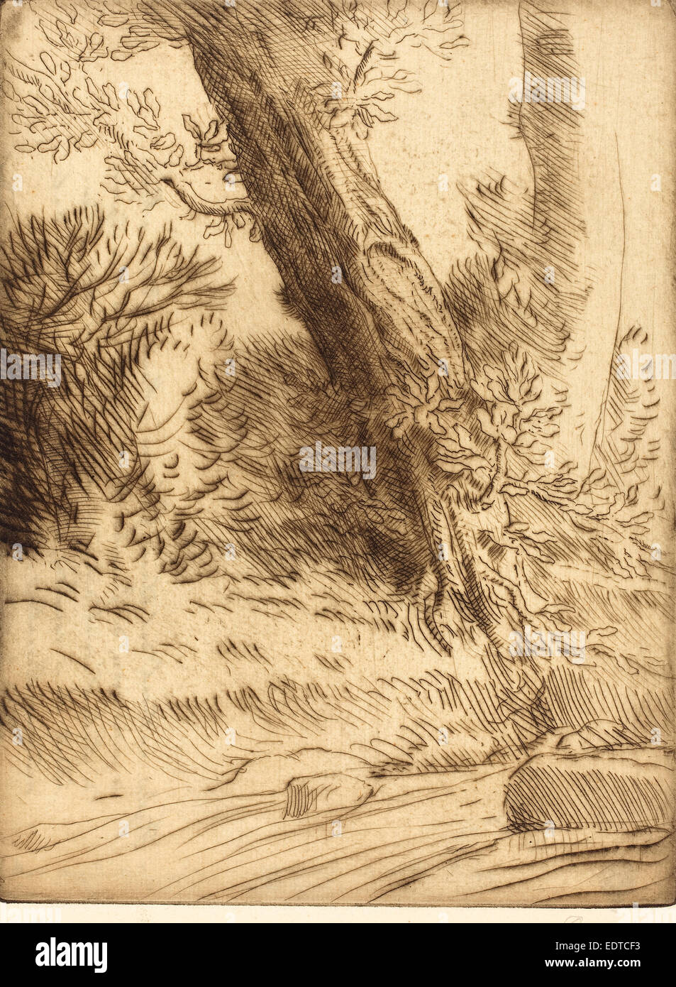 Alphonse Legros, Edge of a Brook (Bord de ruisseau), French, 1837 - 1911, drypoint in brown - Stock Image
