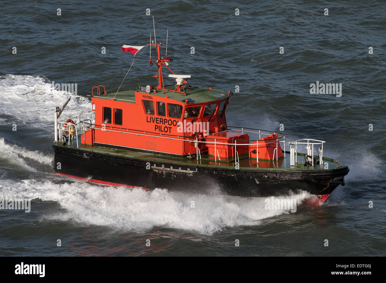 A pilot launch of the Liverpool Pilotage Service Ltd working in the river Mersey, England, UK. - Stock Image