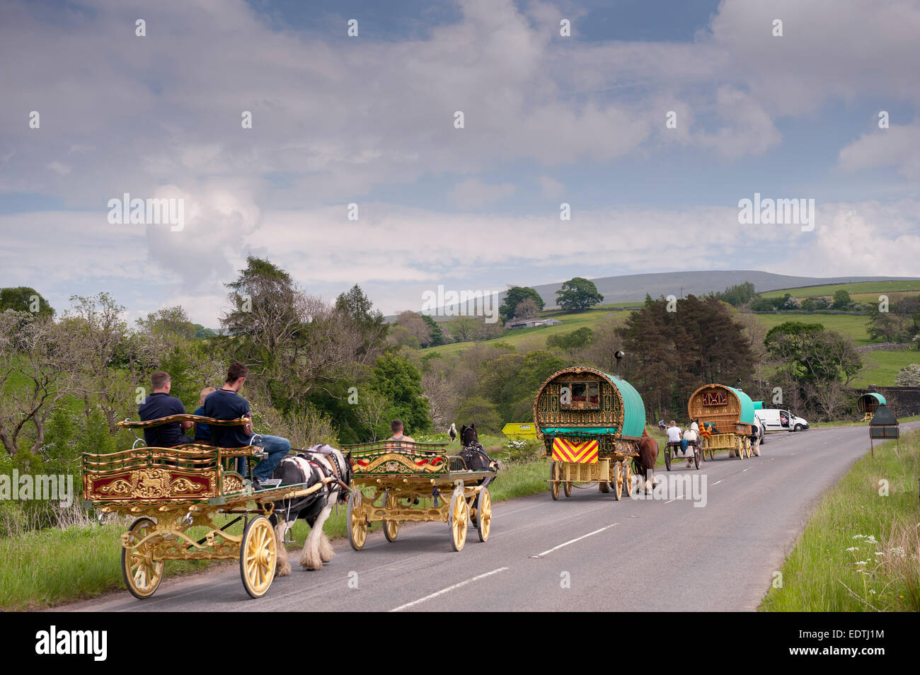 Horse drawn caravans heading towards the horse fair at Appleby in Westmorland along the A683 between Sedbergh and - Stock Image