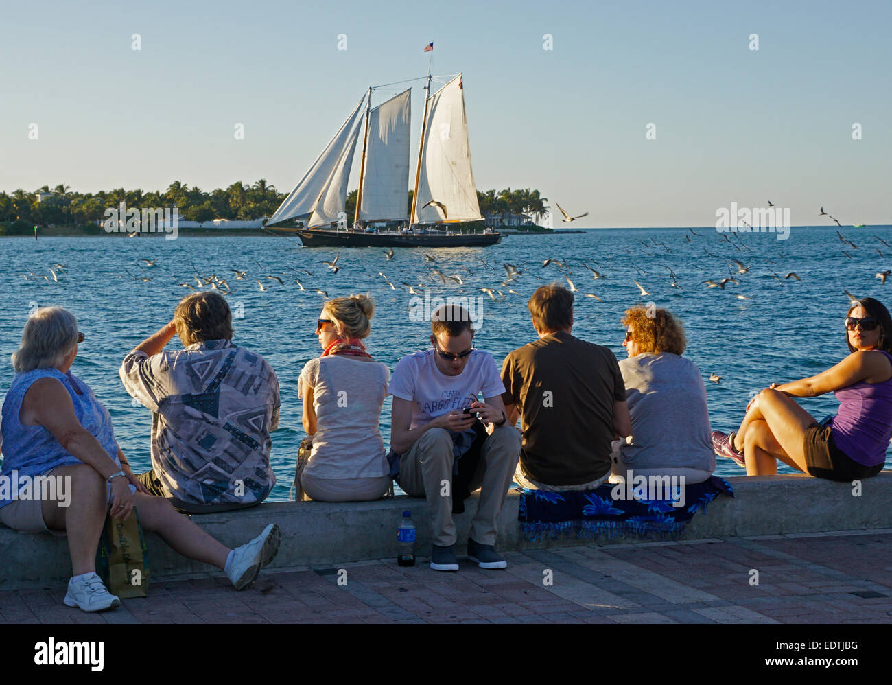 Tourists in Key West's Mallory Square watching schooner on sunset cruise. - Stock Image