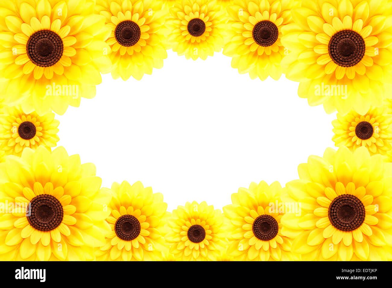 Sunflower frame Stock Photo: 77373514 - Alamy