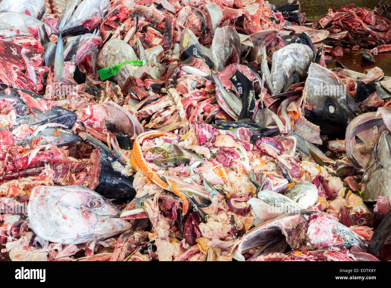 Fish garbage in the large Kitchen Waste rubbish, for recycling Stock Photo