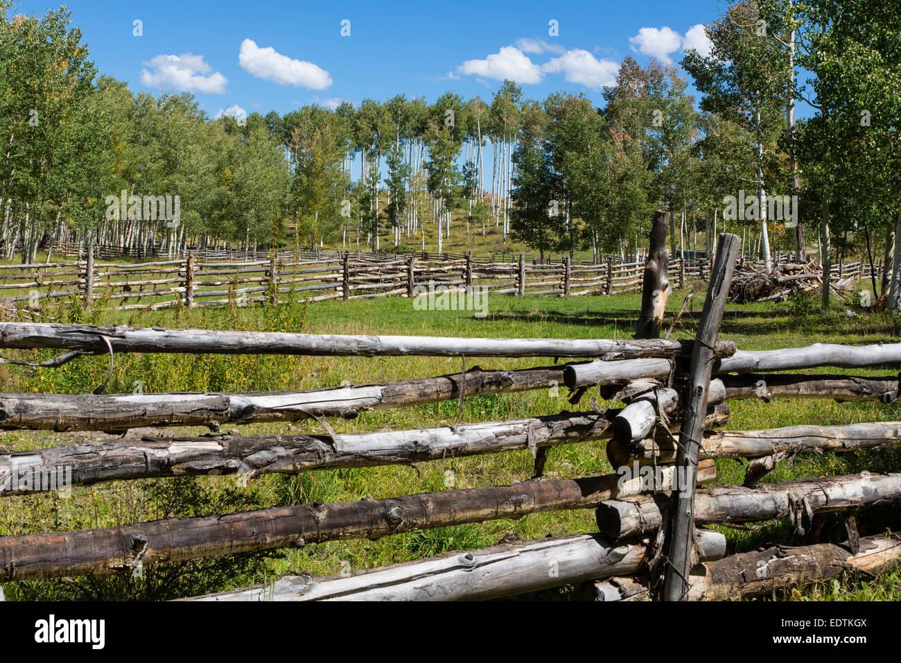 Fences along County Rt 5 outside Ridgeway Colorado - Stock Image