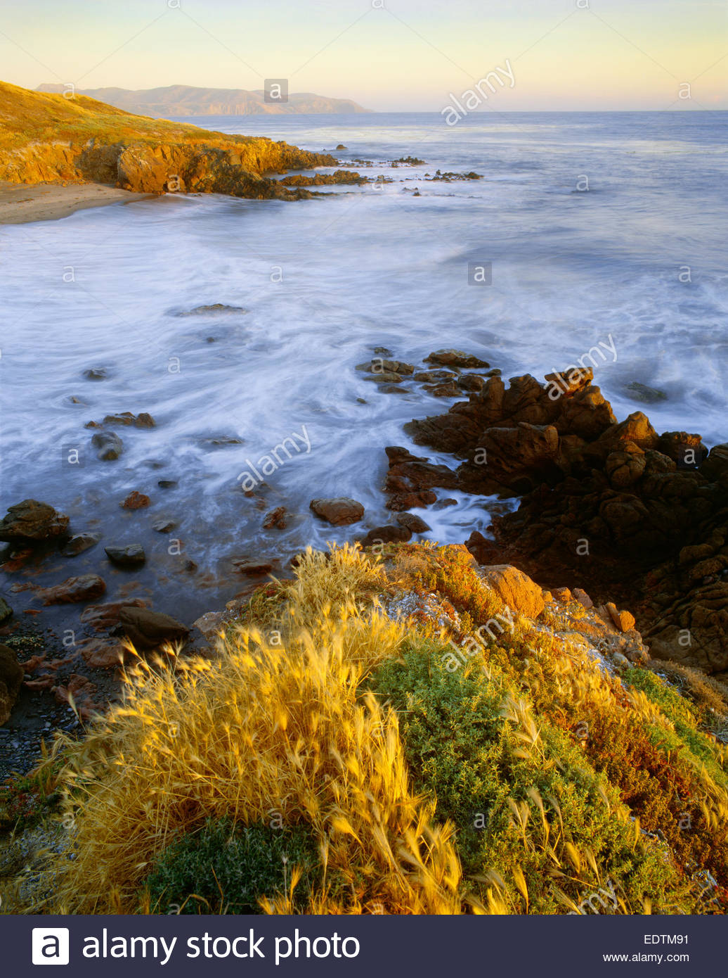 The west end of Santa Cruz Island Preserve The Nature Conservancy.  Santa Cruz Island, California. - Stock Image
