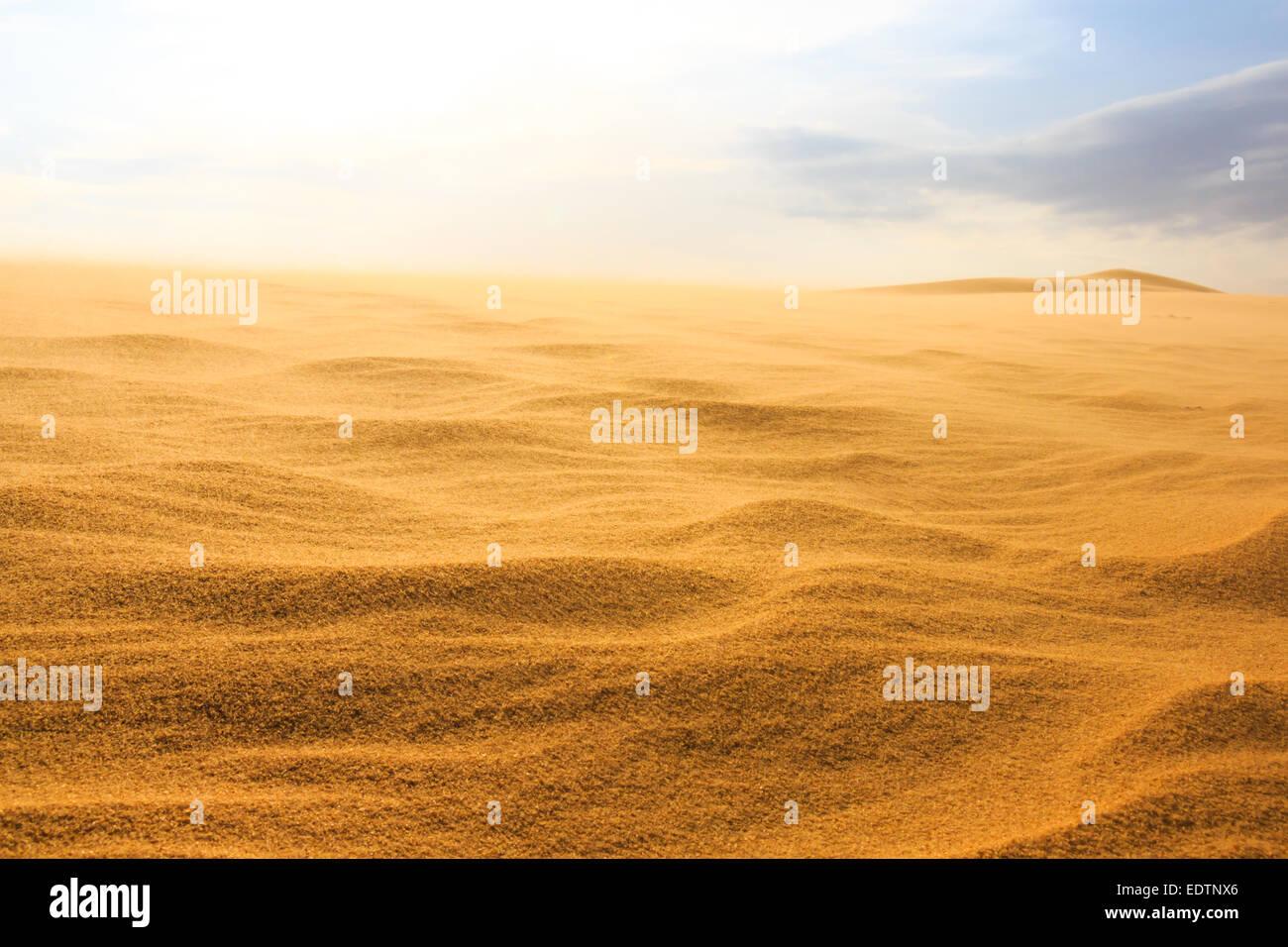 Wave on desert at Mui Ne, South Vietnam - Stock Image