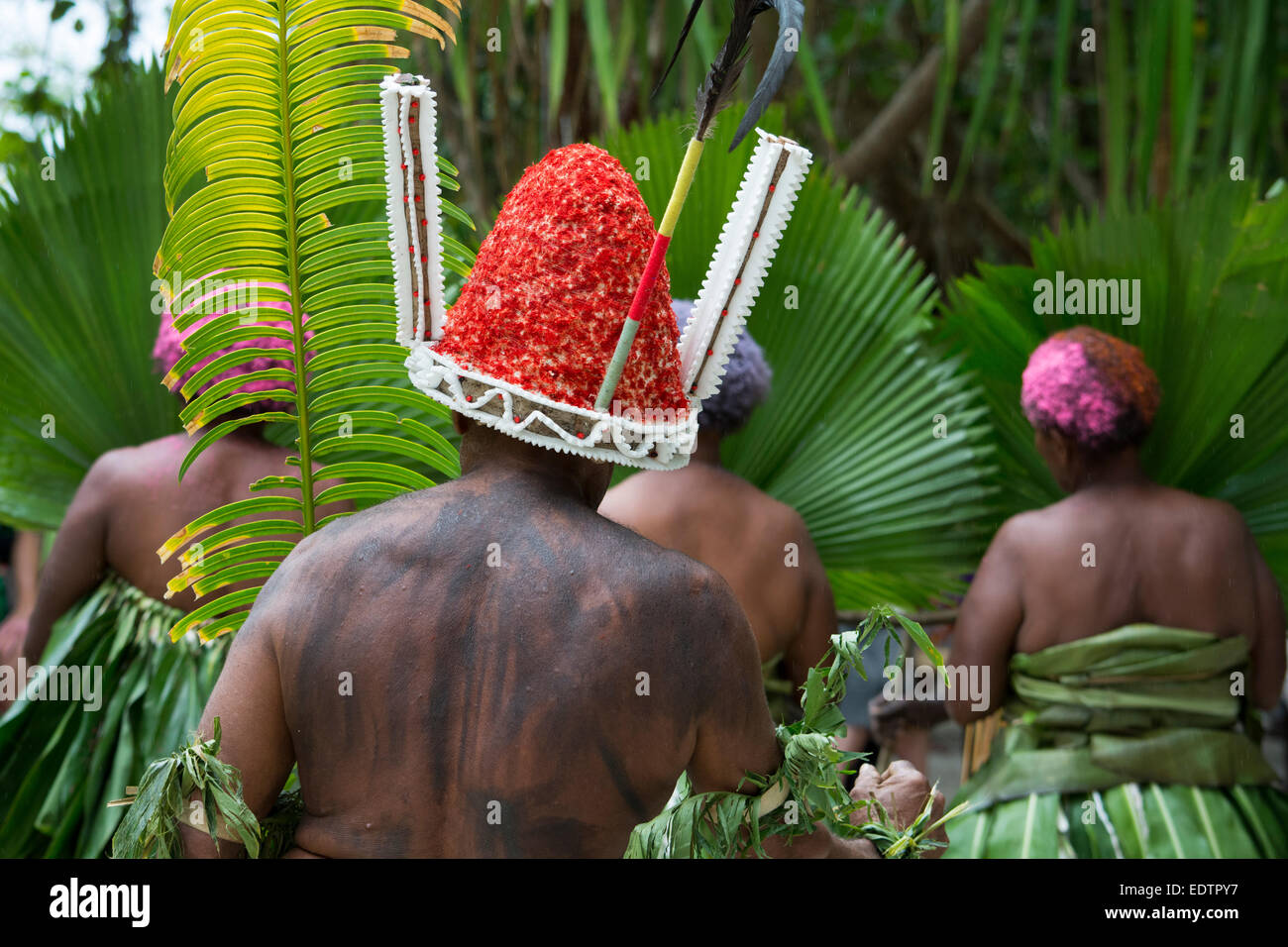Republic of Vanuatu, Torres Islands, Loh Island. Folkloric demonstration of ceremonial dance. - Stock Image