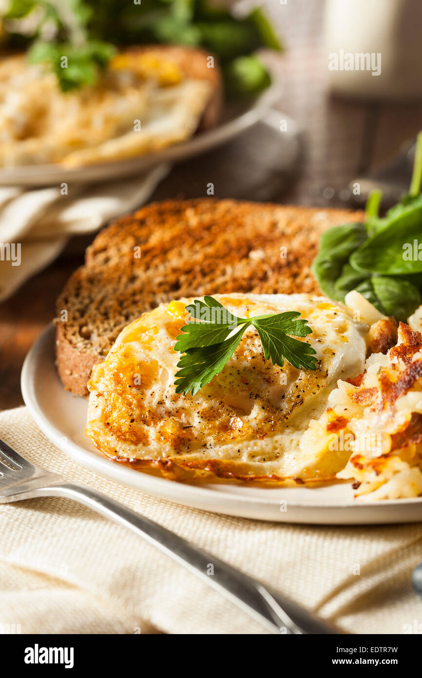 Organic Homemade Fried Eggs with Toast and Hashbrowns - Stock Image