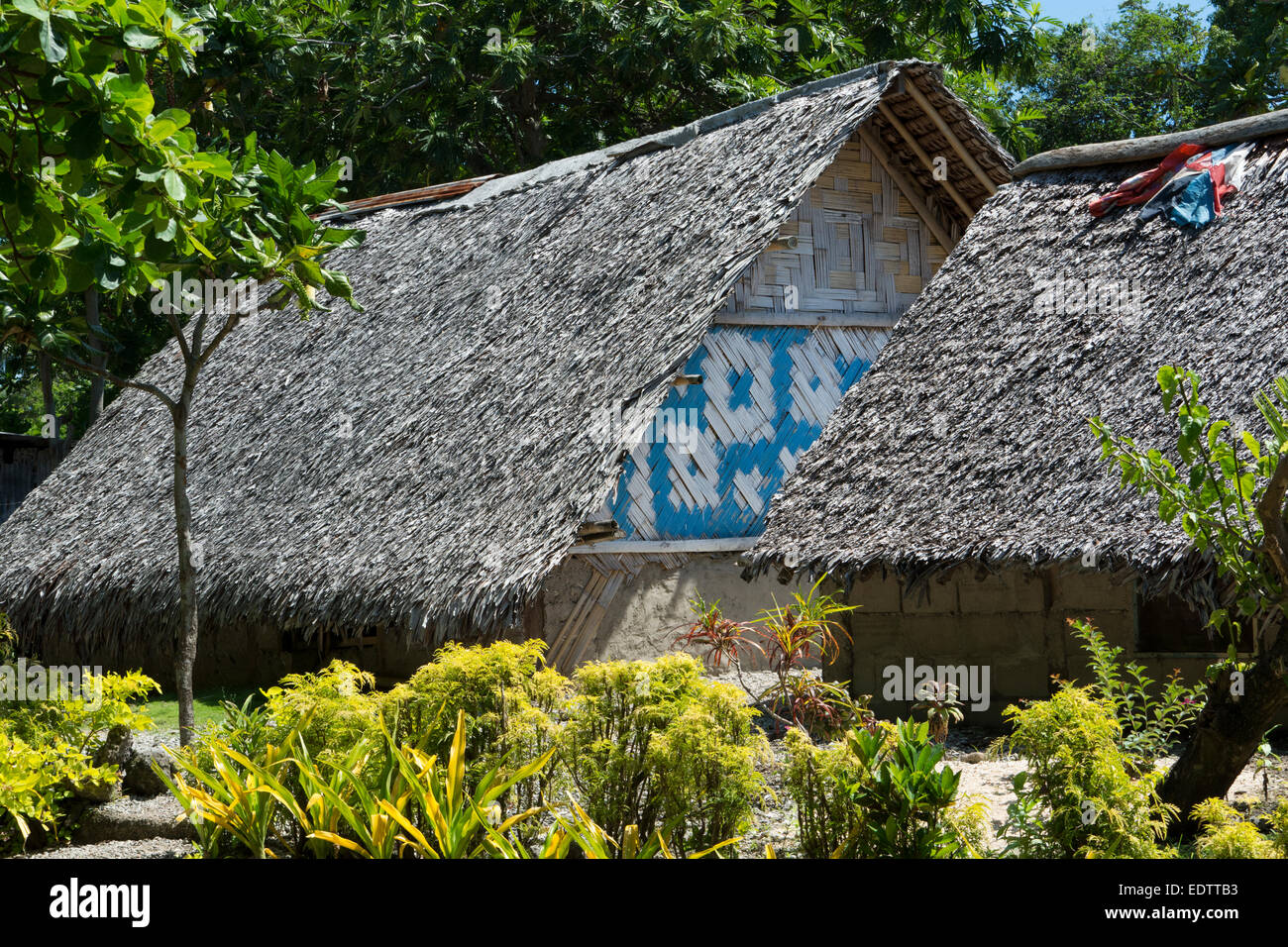 Melanesia, Vanuatu, Rano Island. Typical thatched village home. - Stock Image