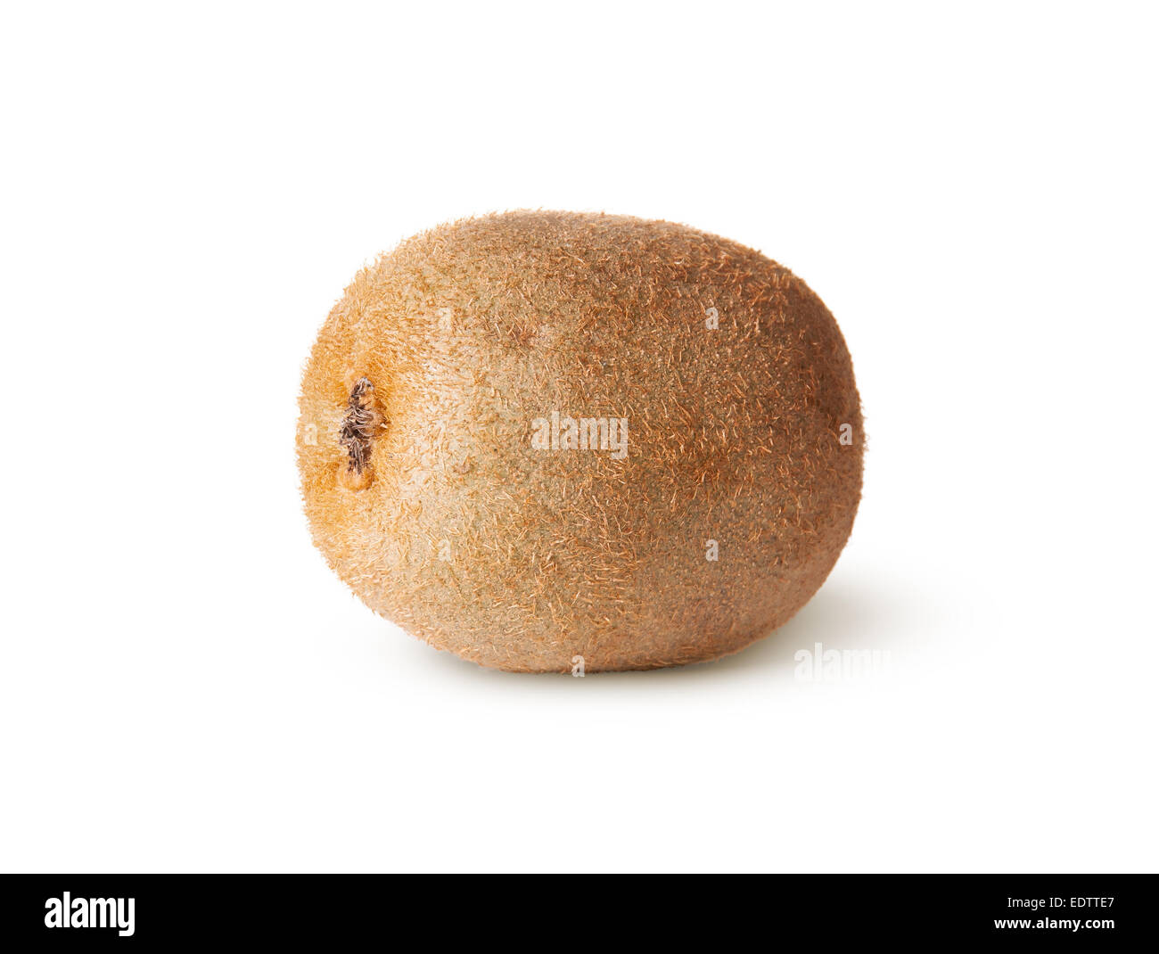 Single Of Juicy Kiwi Fruit Isolated On White Background - Stock Image