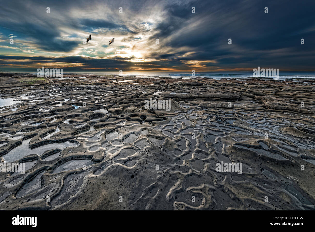 Tidal pools are revealed during low tide at Potholes at Hospitals reef in La Jolla, California, USA. - Stock Image