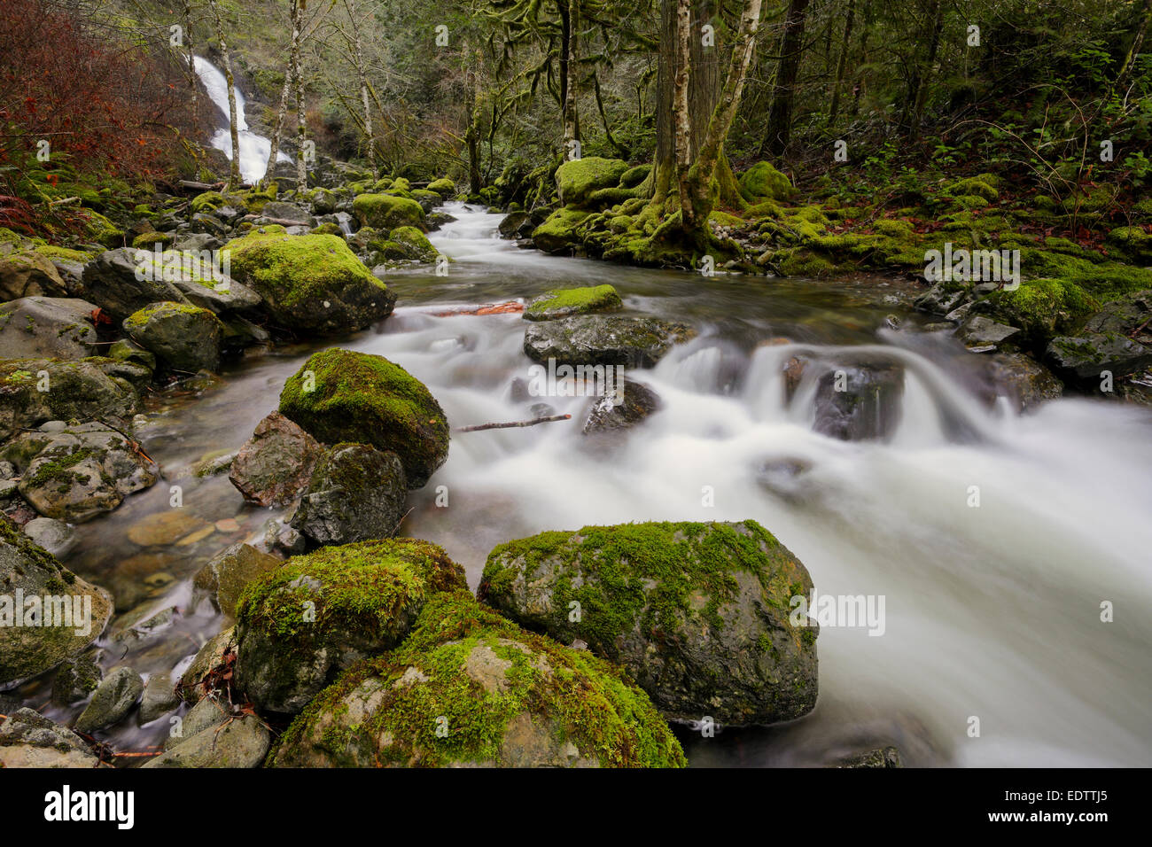 Todd Creek and waterfall in Sooke Potholes Park-Sooke, British Columbia, Canada. - Stock Image