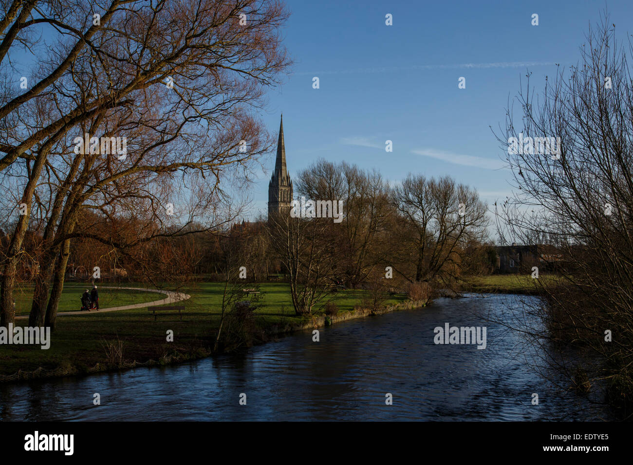 View of Salisbury Cathedral spire from 'Town Path' with the River Avon in foreground. Stock Photo