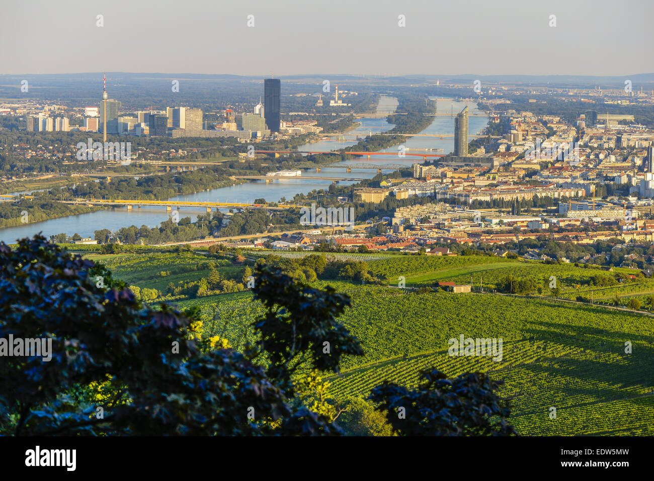 Wien View From Moutain Kahlenberg Vienna Austria Central Europe