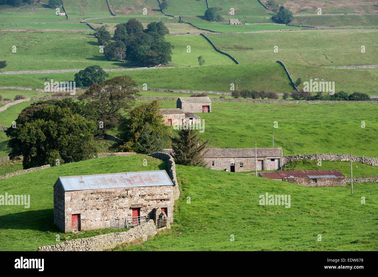 Traditional stone barns in Wensleydale, Yorkshire, UK. - Stock Image