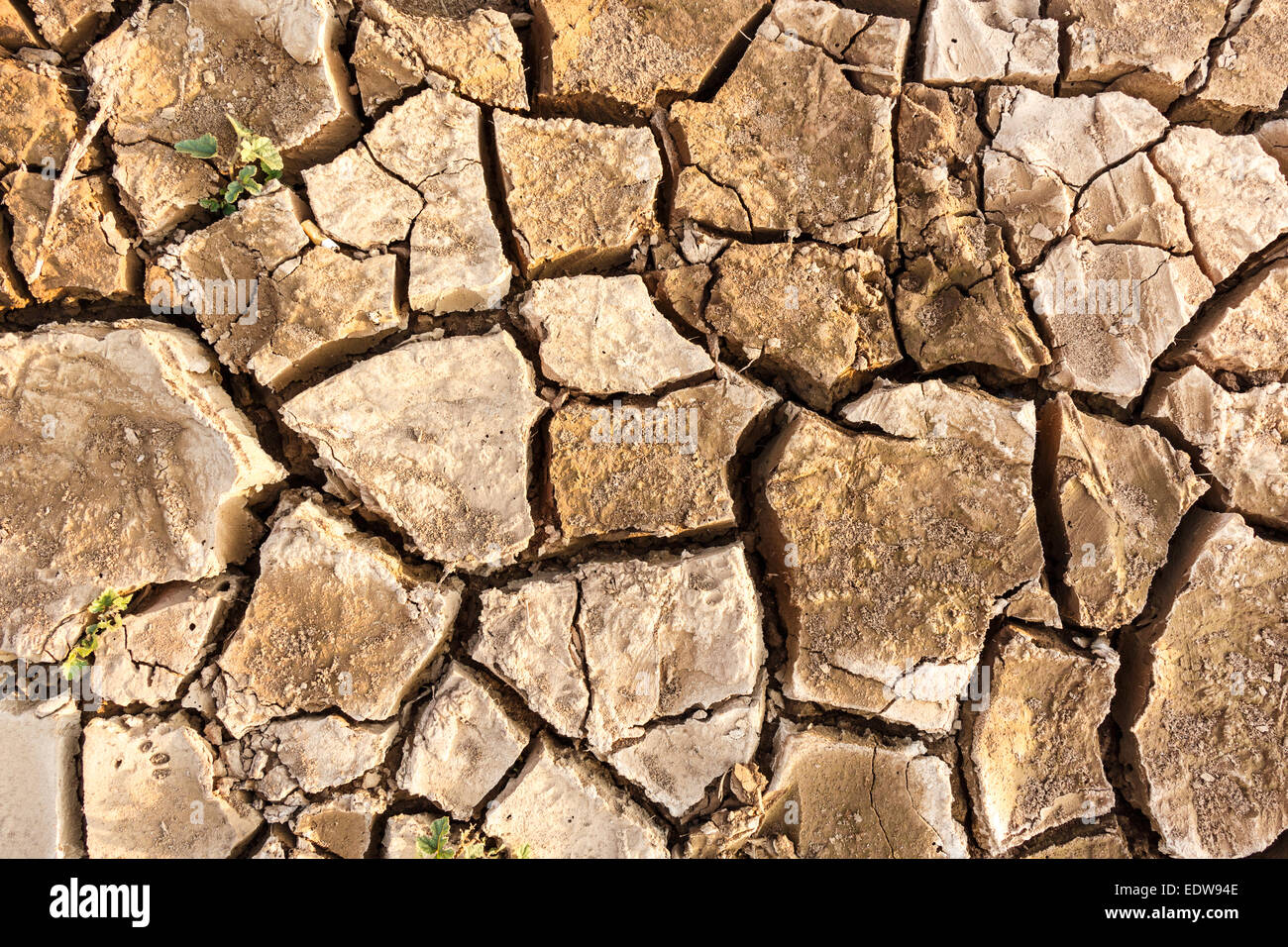 a crack ground in arid environment ,Thailand - Stock Image
