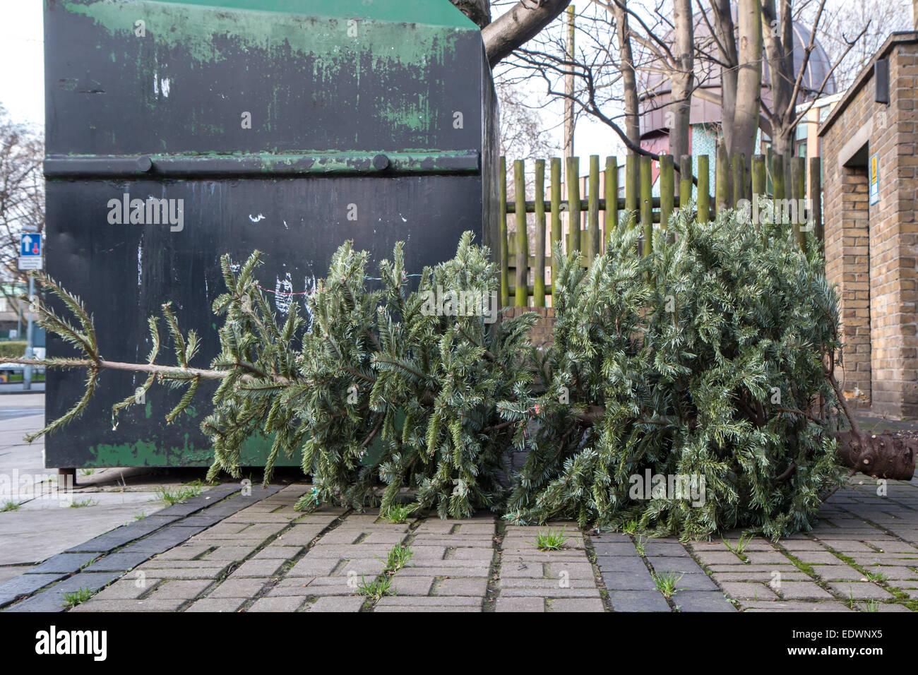 Abandoned Christmas tree - Stock Image