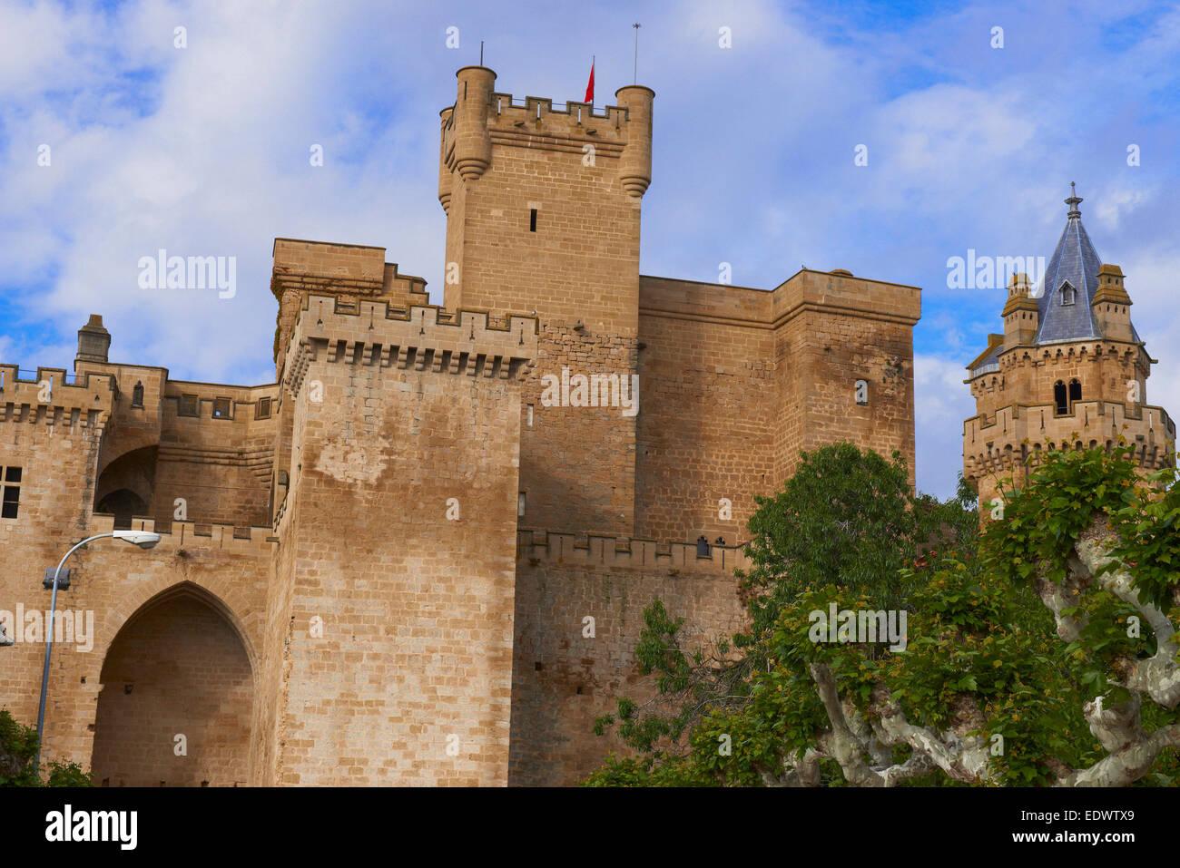 Los dominios del Reino de Navarra En Olite