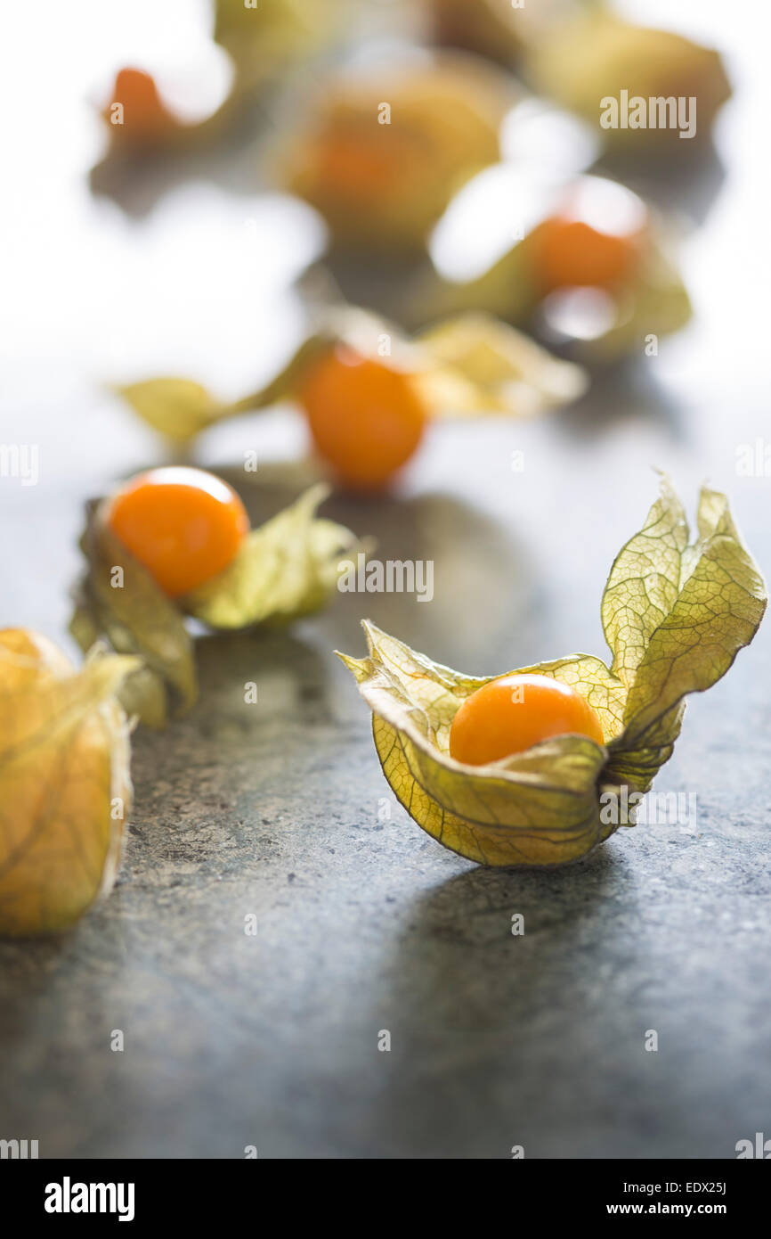large physalis or cape gooseberry group with delicate papery husk on green marble - Stock Image