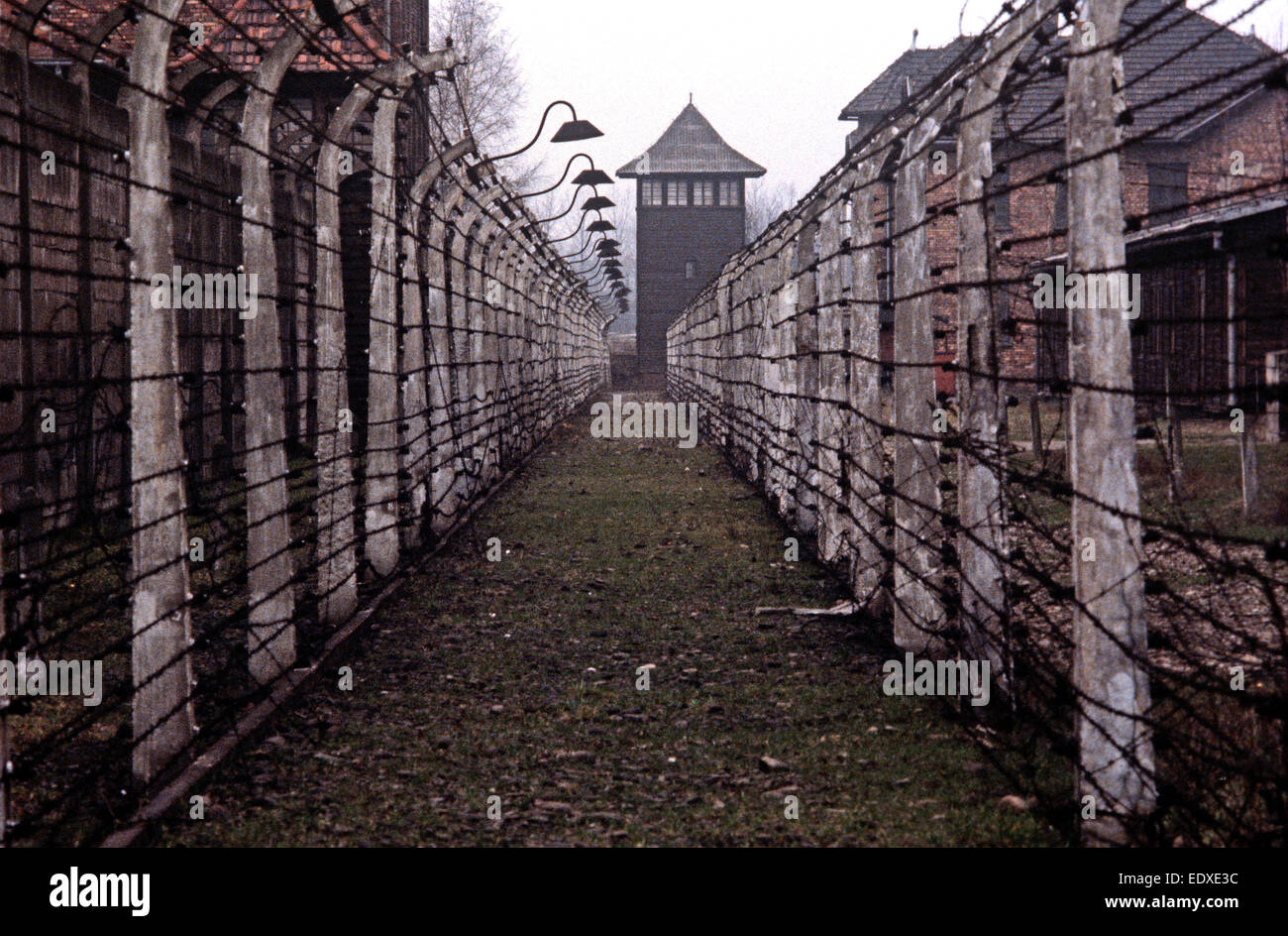 Your idea auschwitz concentration camp are