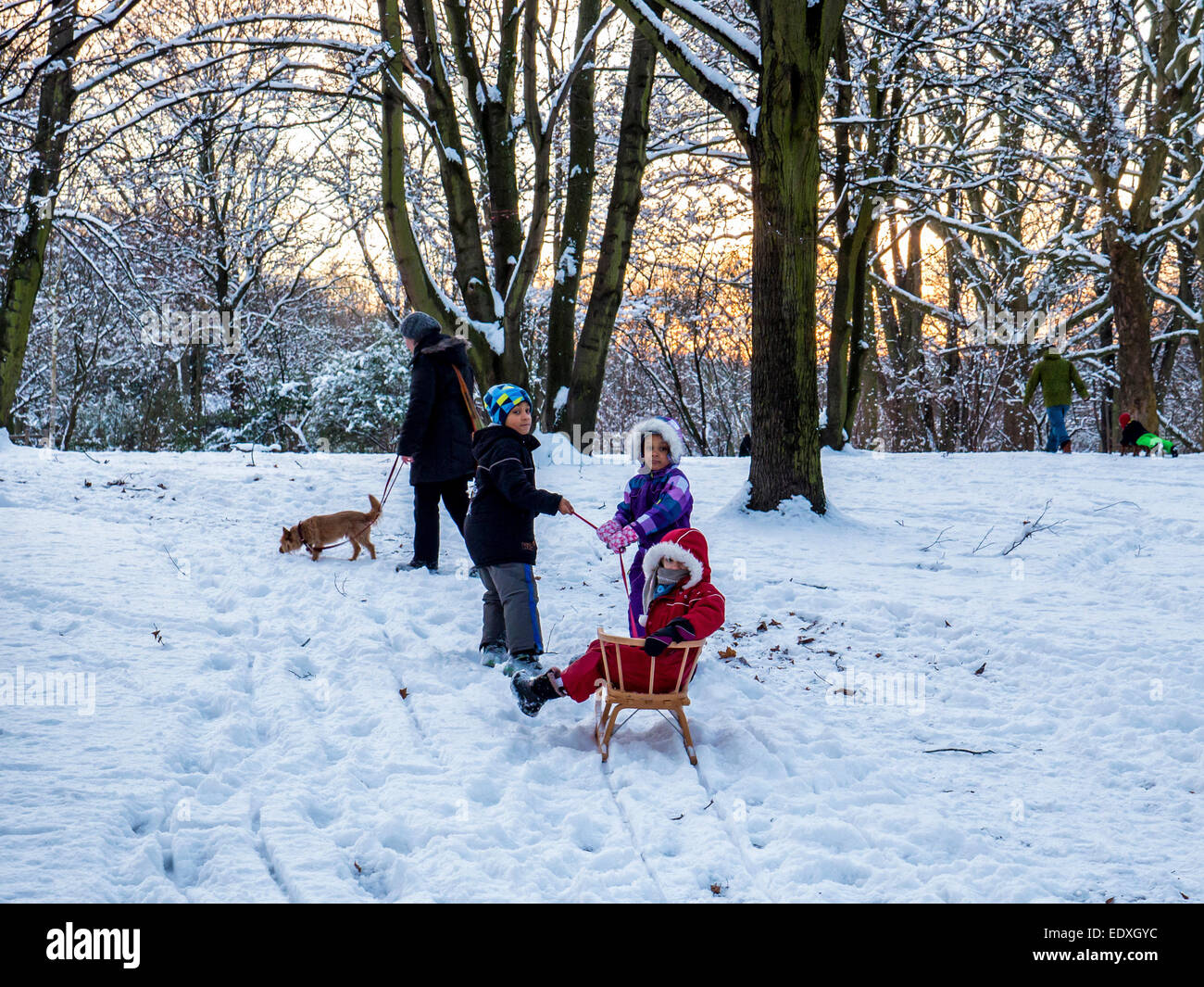 Woman, dog, three children and toboggan in heavy winter snow in Public Park, Humbolthain Volkspark, Brunnenviertel, - Stock Image