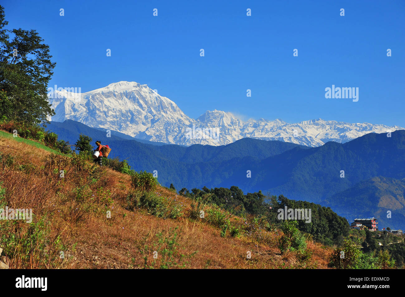 View of the Himalayan range from Nepal. The Annapurna Range - Stock Image