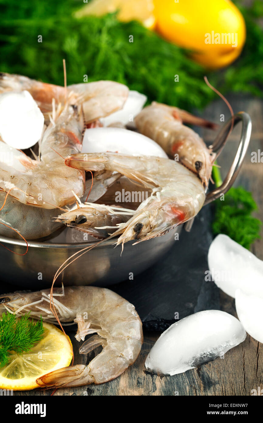 Raw Shrimps on ice with fresh dill and lemon - Stock Image
