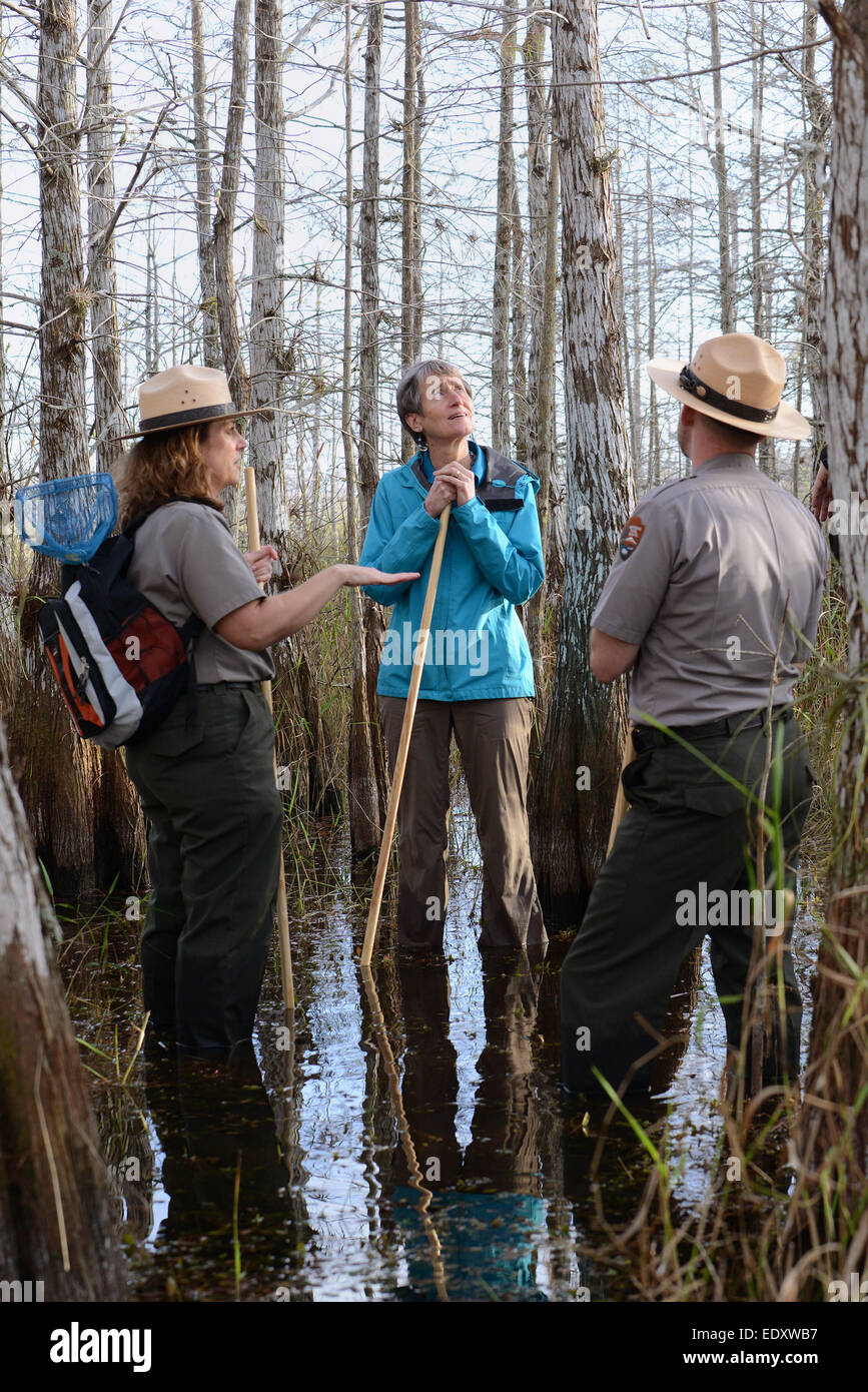 US Interior Secretary Sally Jewell stops to view the mangrove swamps and wetlands restoration efforts during a visit Stock Photo