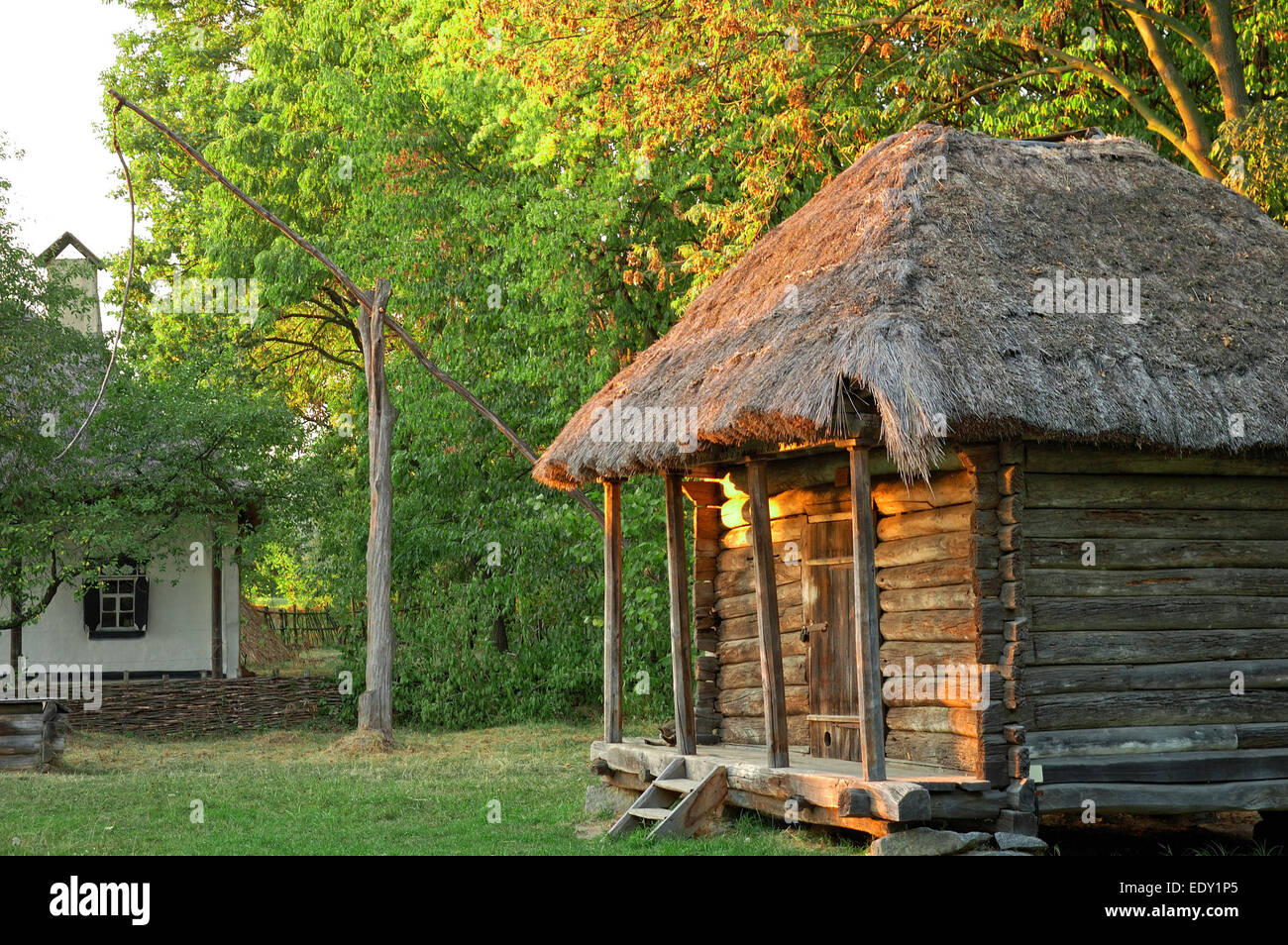 evening on the yard with wooden house - Stock Image