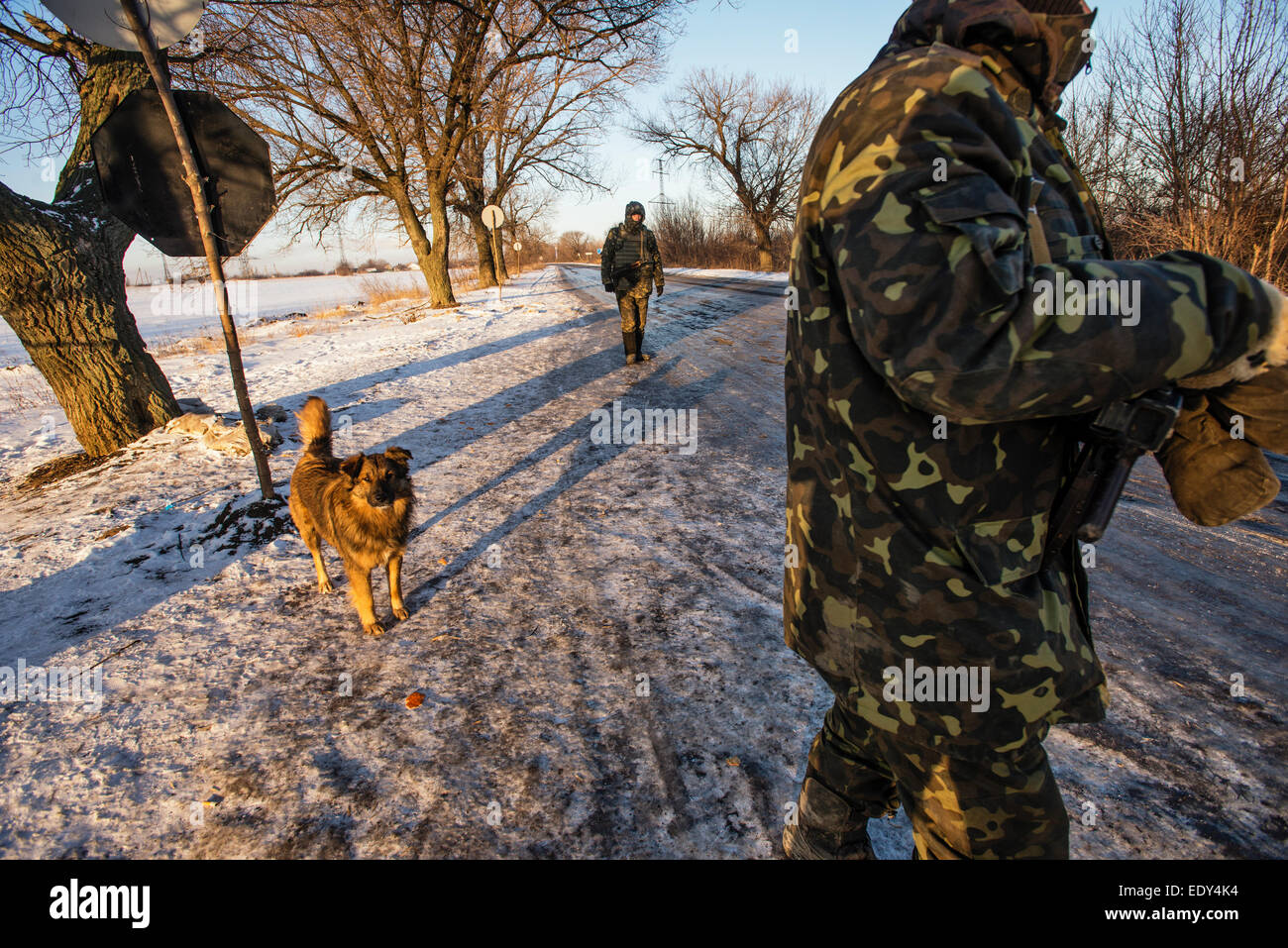 Hotels for animals in Donetsk region: a selection of sites