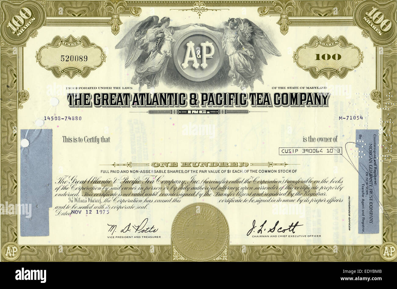Historic share certificate, The Great Atlantic & Pacific Tea Company, Maryland, USA, 1975 - Stock Image