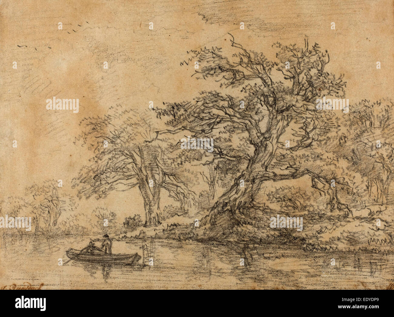 1628-1629 - 1682), Old Trees along a Bank, late 1640s, black chalk
