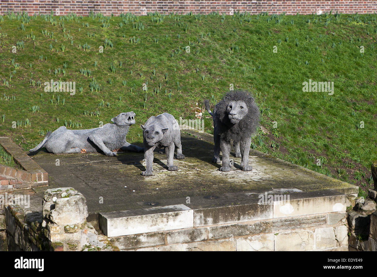 London - October 17, 2014: Lions made from wire mesh by Kendra Haste at the Tower of London - Stock Image