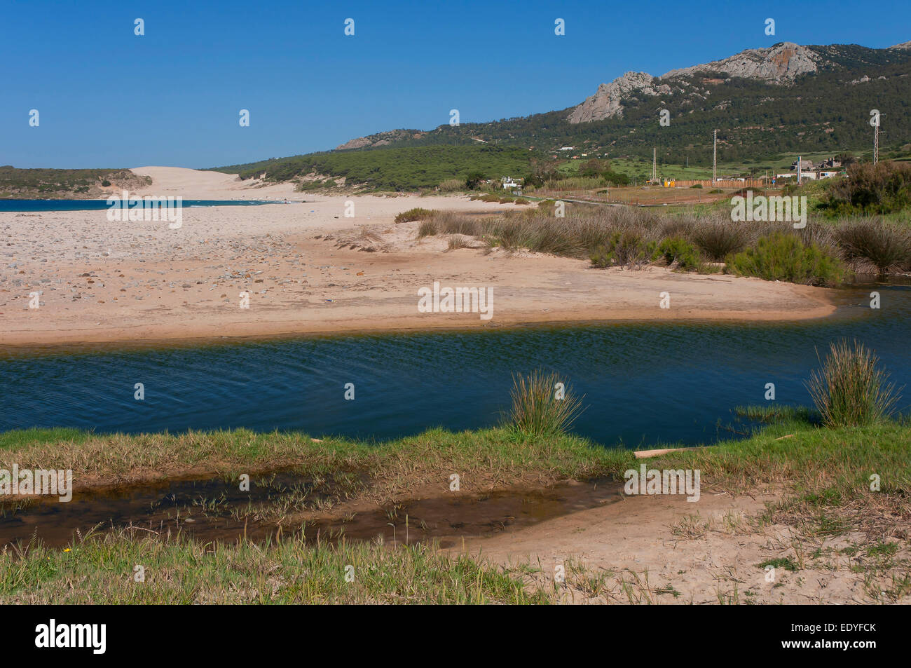Bolonia beach and Sierra de la Plata, Tarifa, Cadiz province, Region of Andalusia, Spain, Europe Stock Photo