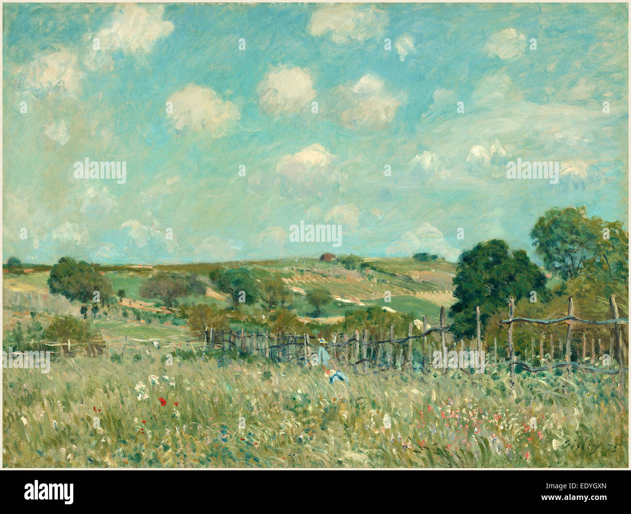 Alfred Sisley, Meadow, French, 1839-1899, 1875, oil on canvas - Stock Image
