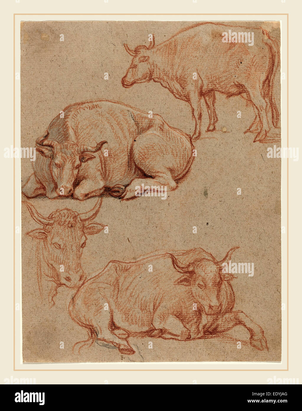 Claude Lorrain, French (1604-1605-1682), Four Cows, red and black chalks with gray wash on laid paper - Stock Image