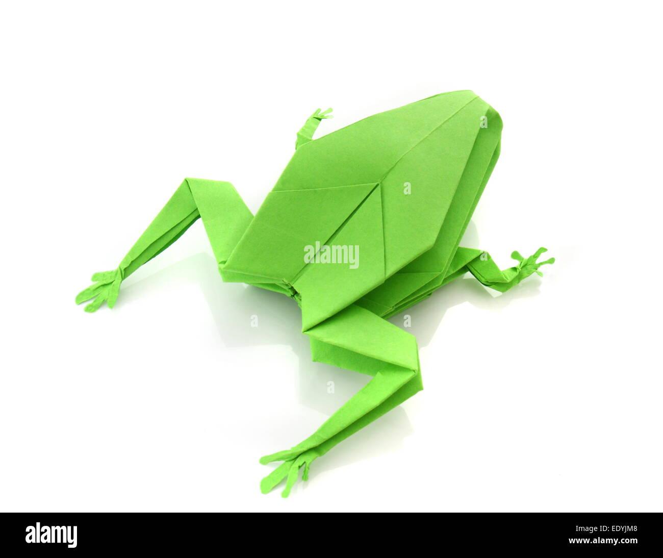 Jo Nakashima - 181/365 Origami Frog by Leyla Torres... | Facebook | 1095x1300