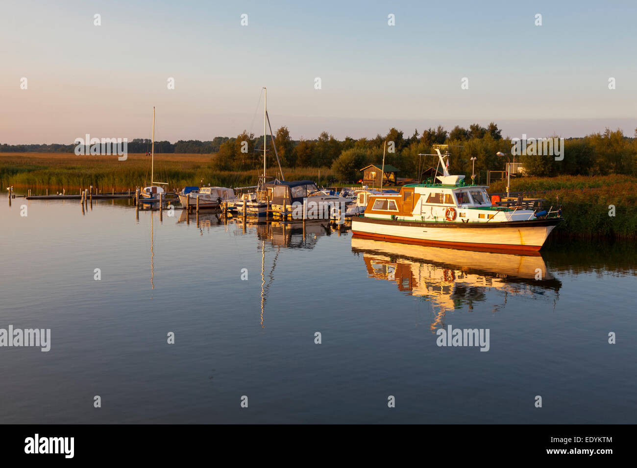 A small motorboat anchored at a landing stage on the Bodden lagoon, evening mood, Zingst, Fischland-Zingst - Stock Image