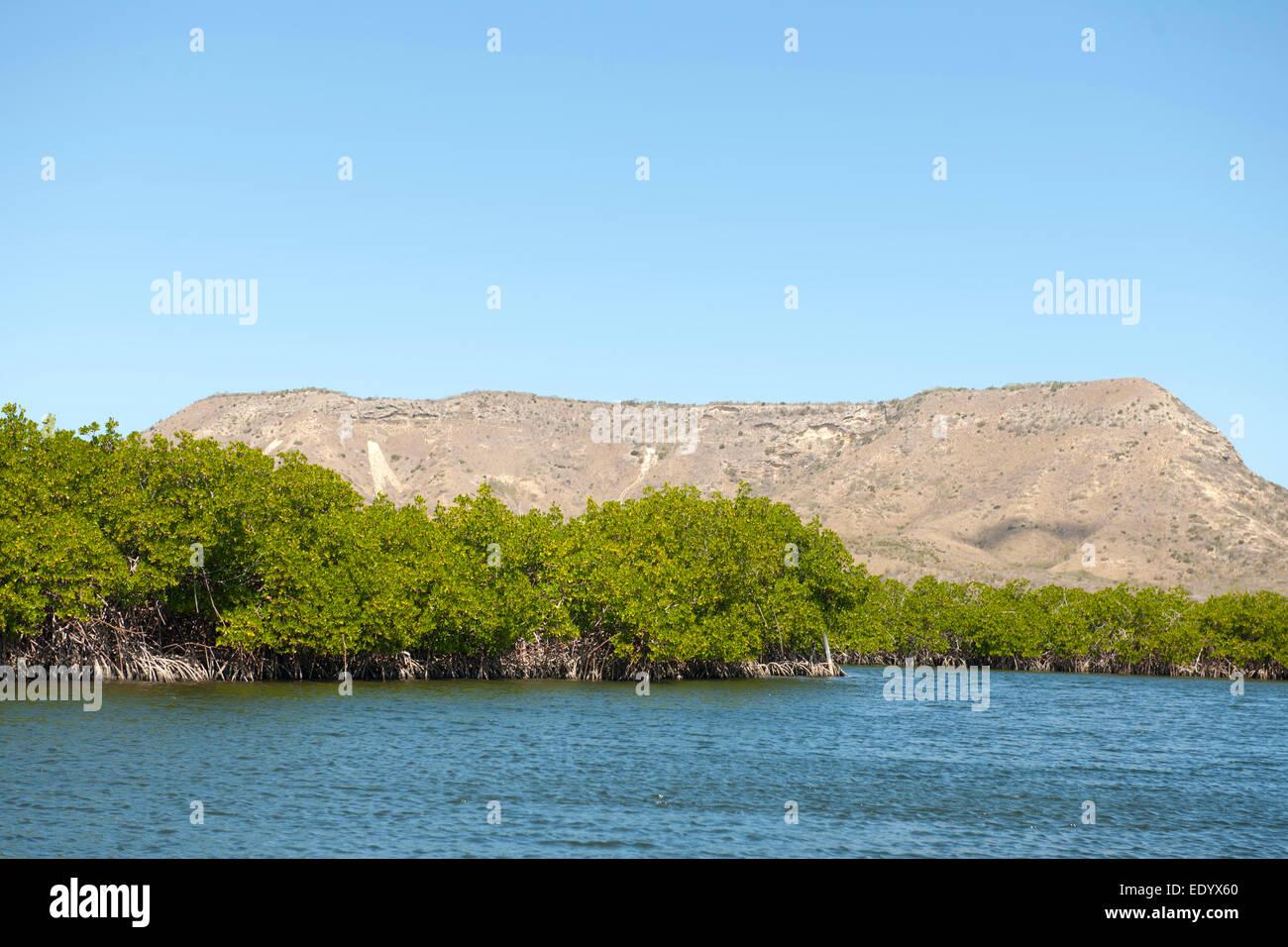 Dominikanische Republik, Nordküste, Monte Christi, im Nationalpark Monte Christi, Tafelberg El Morro - Stock Image