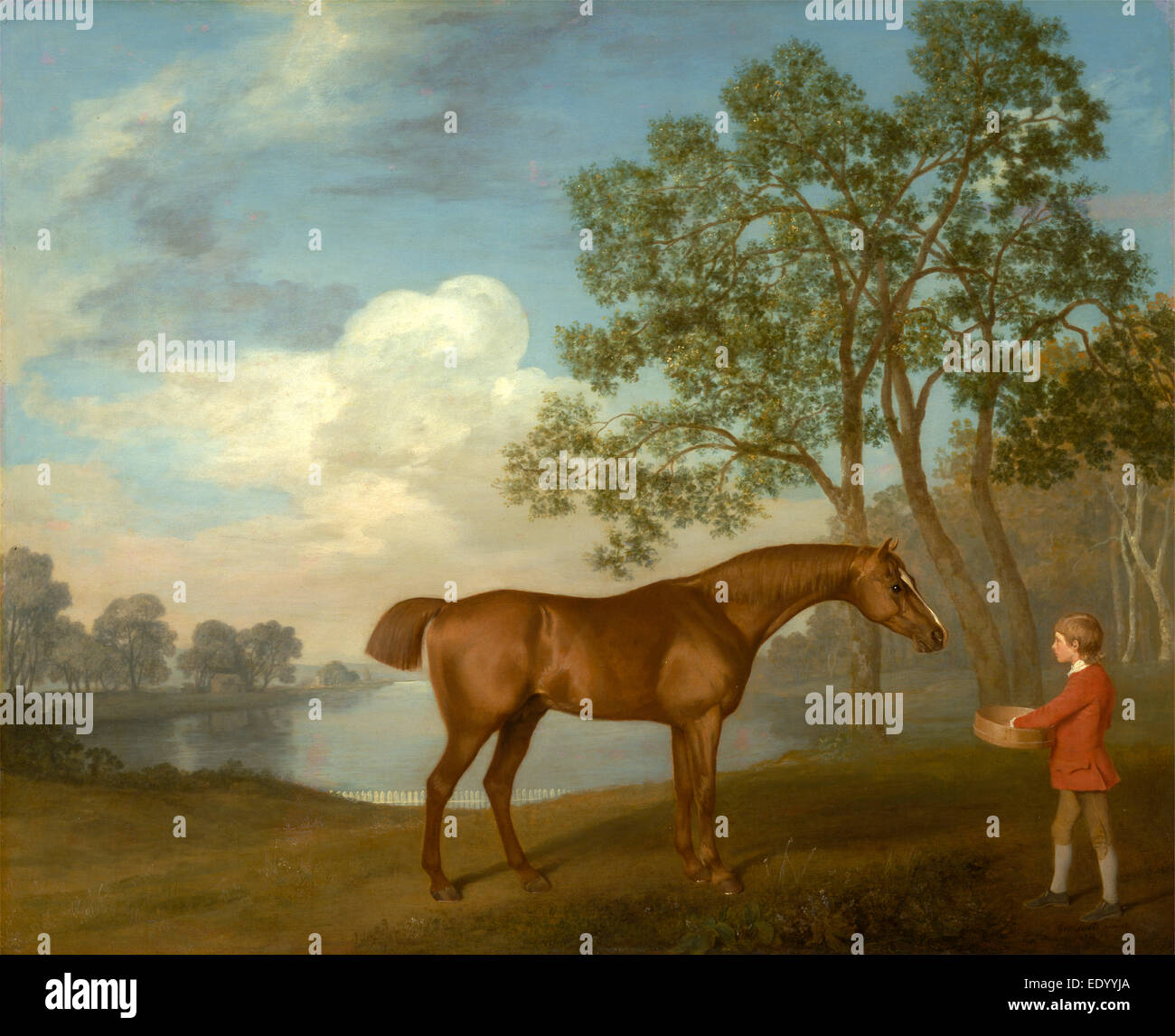 Pumpkin with a Stable-lad Signed and dated, lower right: 'Geo: Stubbs pinxit | 1774', George Stubbs, 1724 - Stock Image