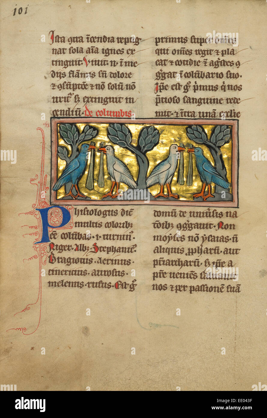 Two Pairs of Doves; Unknown; Thérouanne ?, France (formerly Flanders), Europe; fourth quarter of 13th century - Stock Image