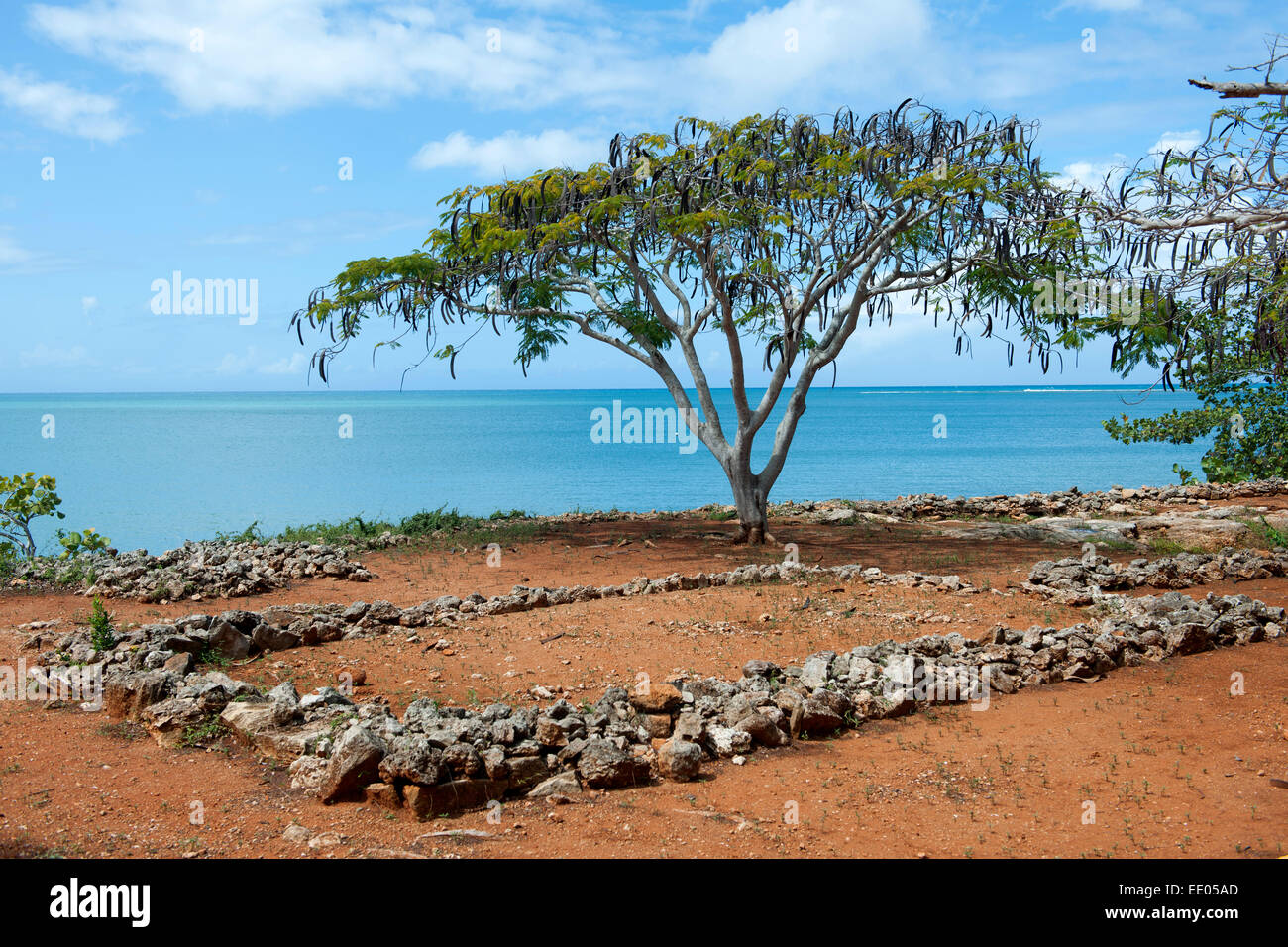 Dominikanische Republik, Nordküste, Ausgrabungen von La Isabela Vieja bei El Castillo, der auf seiner zweiten - Stock Image