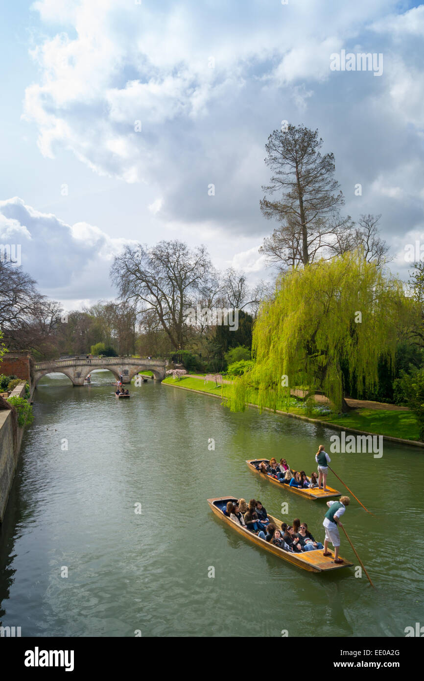 Punts on River Cam - Stock Image