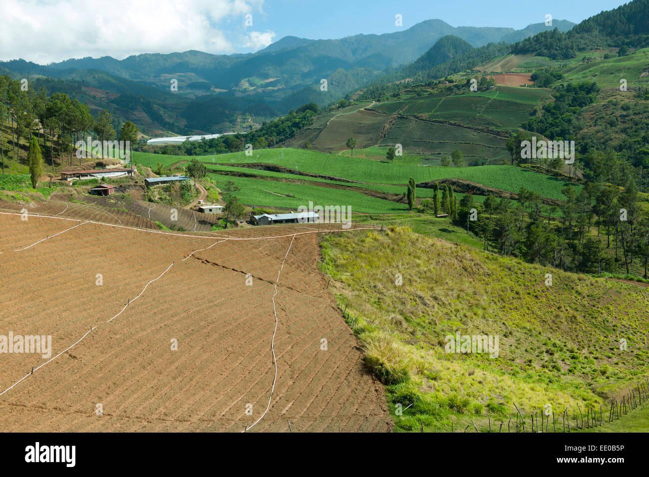 Dominikanische Republik, Cordillera Central, Landschaft südlich von Constanza an der Carretera al Salto de Aguas Stock Photo